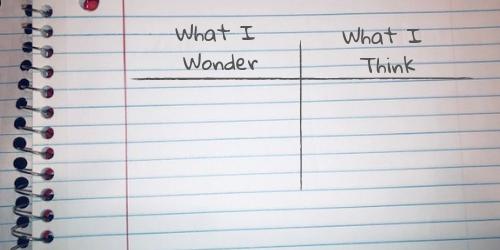 500x250 wonder think